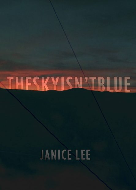 LeeJanice-TheSkyIsn'tBlue