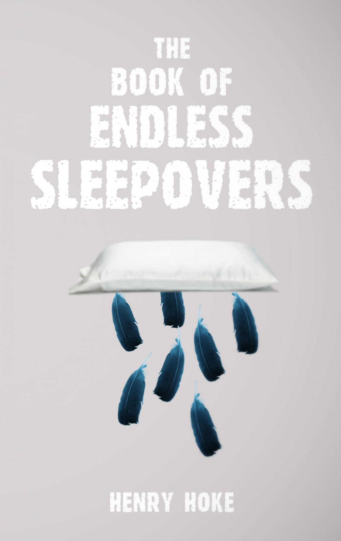 Image result for The Book of Endless Sleepovers